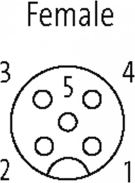 CABO M12 FEMEA RETO 5 POLOS ACO INOXIDAVEL 1.4404 (V4A) 10 METROS